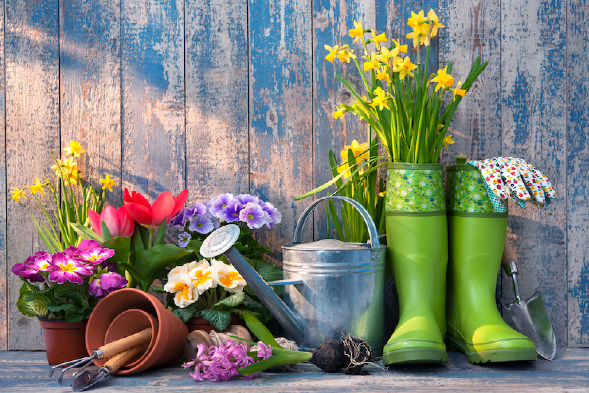 Spring: Tips To Prepare Your Garden