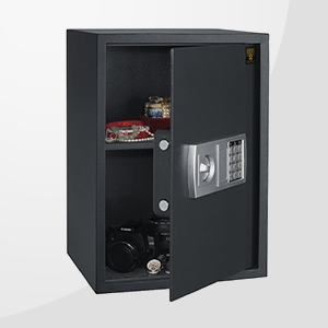 Fire & Water Safes