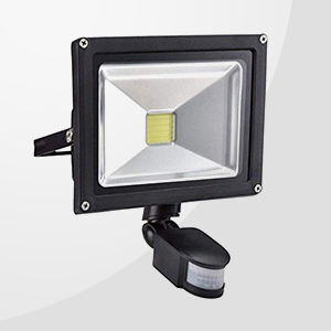 PIR Security Lights