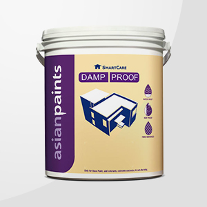 Damp Proof Paints