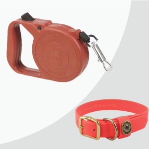 Pet Leashes & Collars