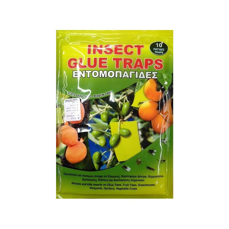 Inscect Glue Fly Traps
