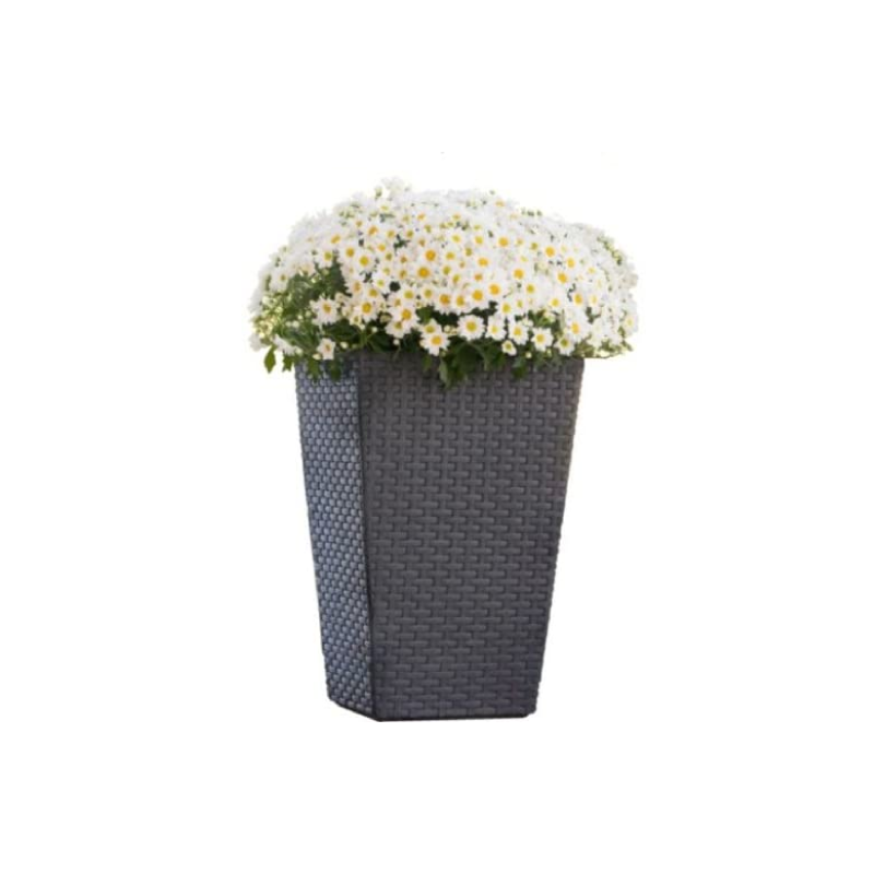 Keter Small Anthracite Rattan Square Flower Pot