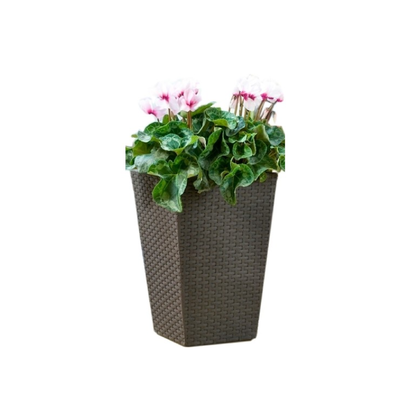 Keter Small Brown Rattan Square Flower Pot
