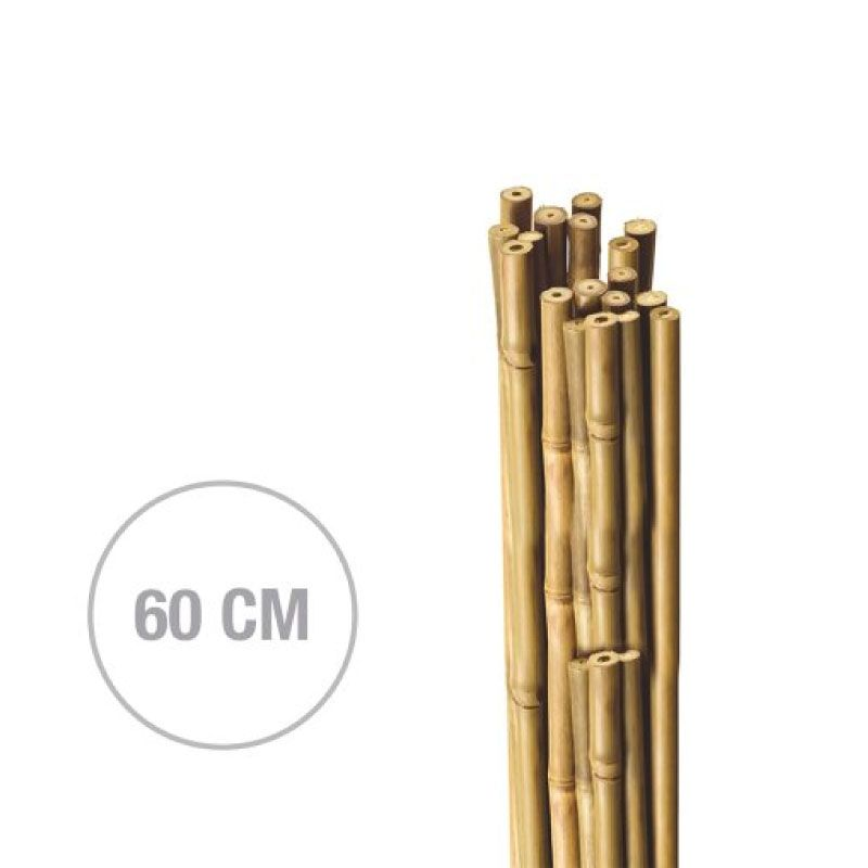Natcare Vertical (H)60cm (D)8-10mm Bamboo Plant Supports